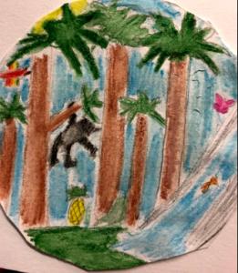 Bild till faktatext om regnskogen.